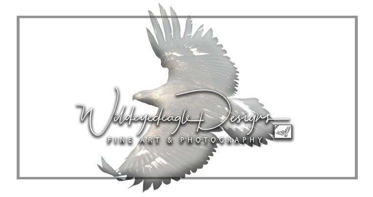 Wildeyedeagle Designs
